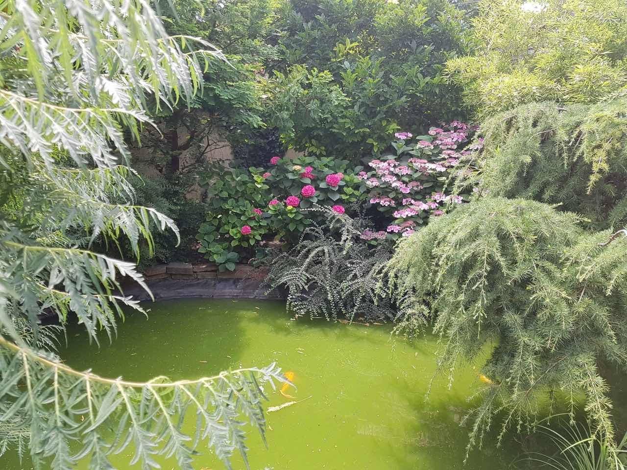 Алсу показала роскошный интерьер своей пятиэтажной усадьбы